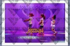 DSC0484