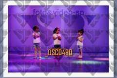 DSC0490