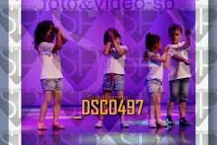 DSC0497