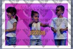 DSC0509