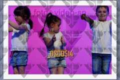 DSC0514