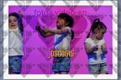 DSC0515