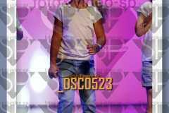DSC0523