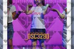 DSC3290