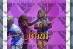 DSC3293