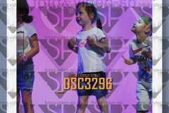 DSC3296