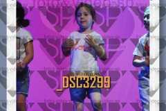 DSC3299