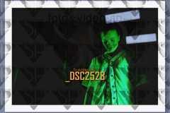 DSC2528