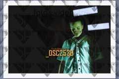 DSC2530