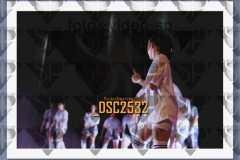 DSC2532