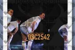 DSC2542