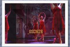 DSC1628