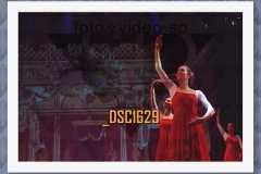 DSC1629