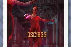 DSC1633