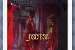 DSC1634