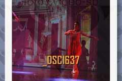 DSC1637