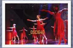 DSC1640