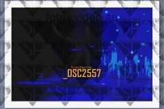 DSC2557