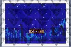 DSC2560