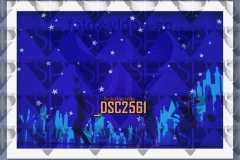 DSC2561