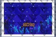 DSC2562
