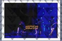 DSC2572