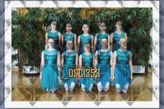 DSC1353