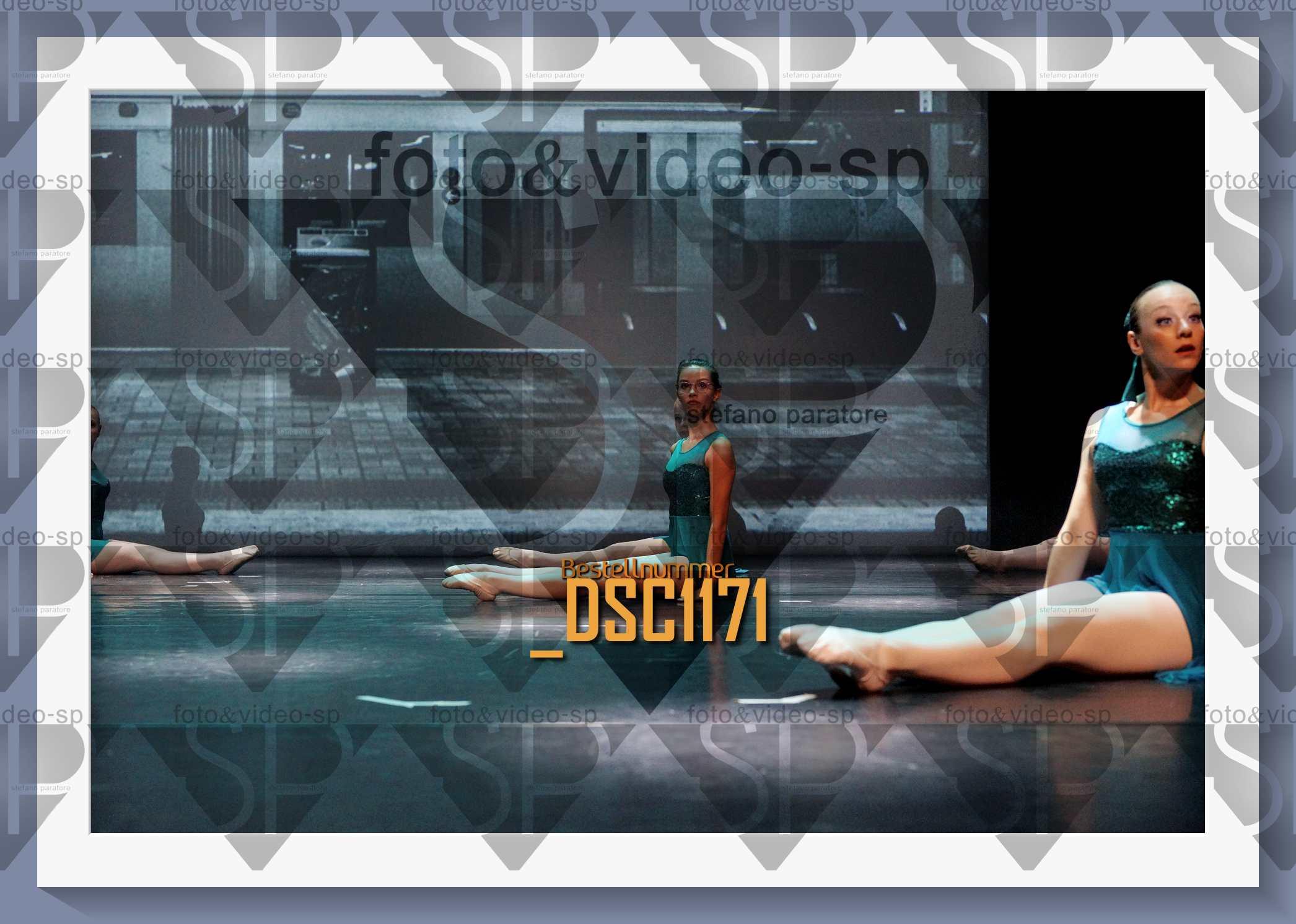 DSC1171
