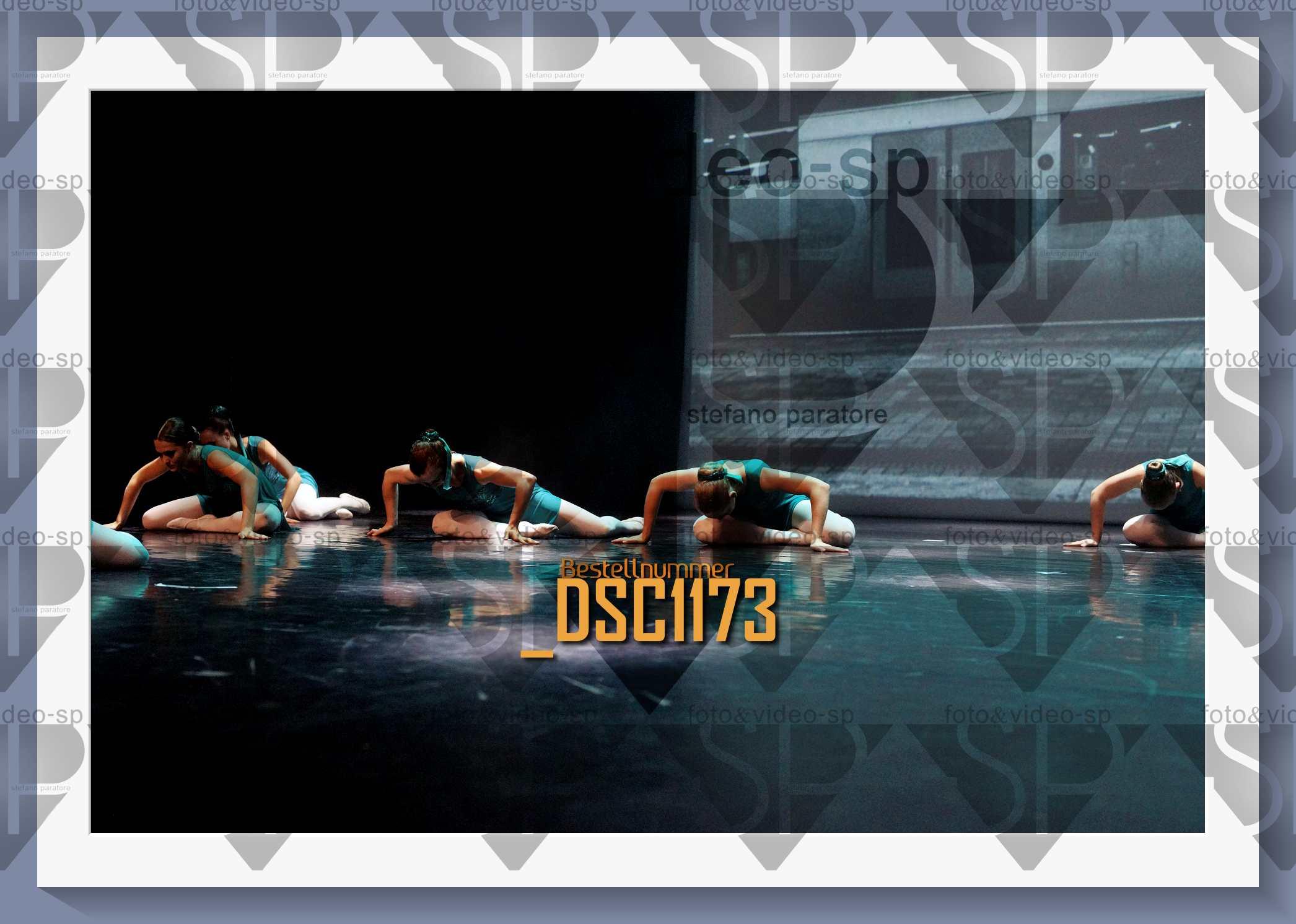 DSC1173