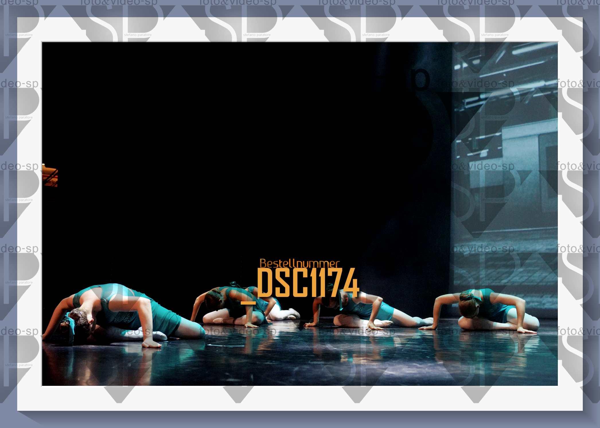 DSC1174