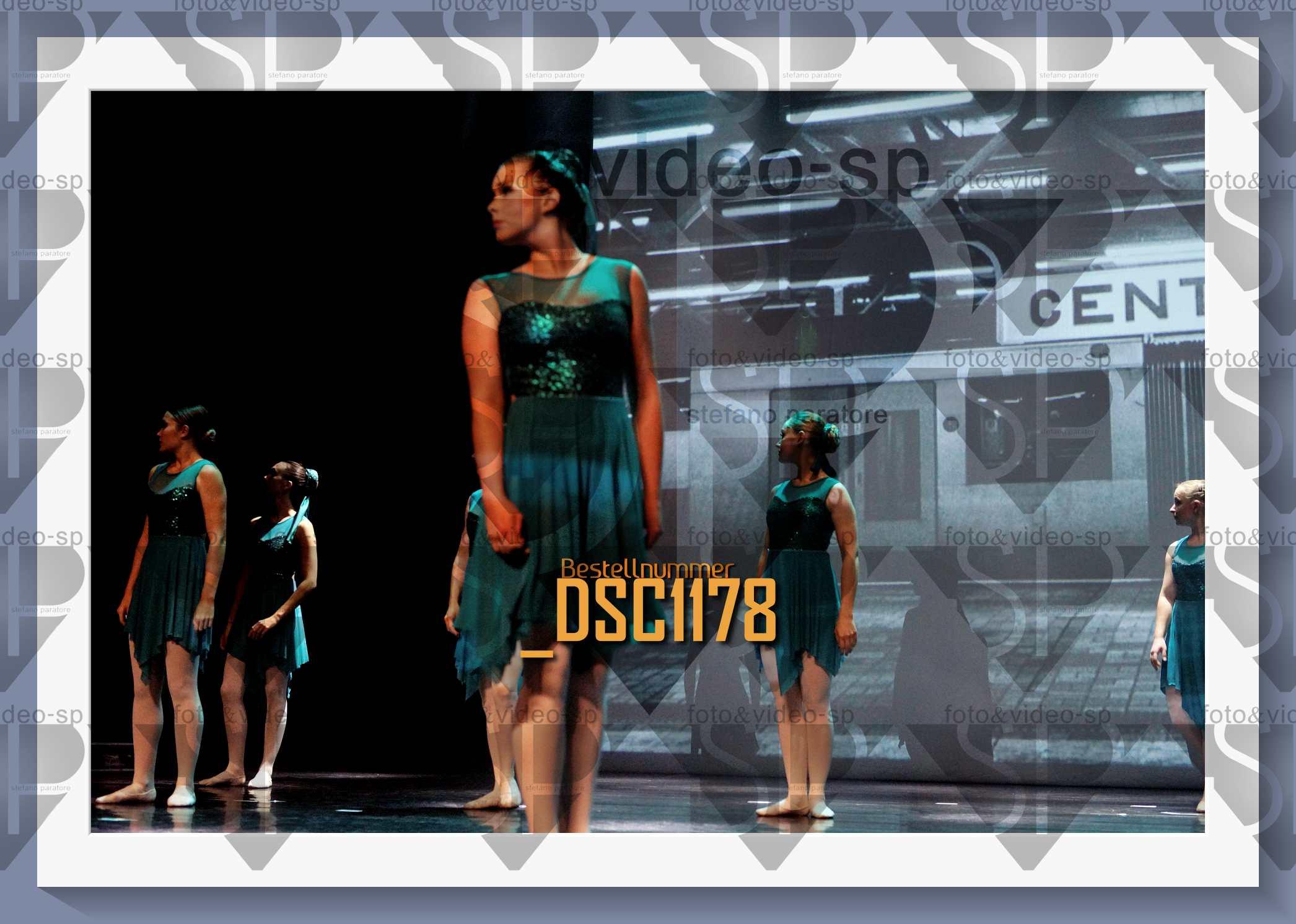 DSC1178