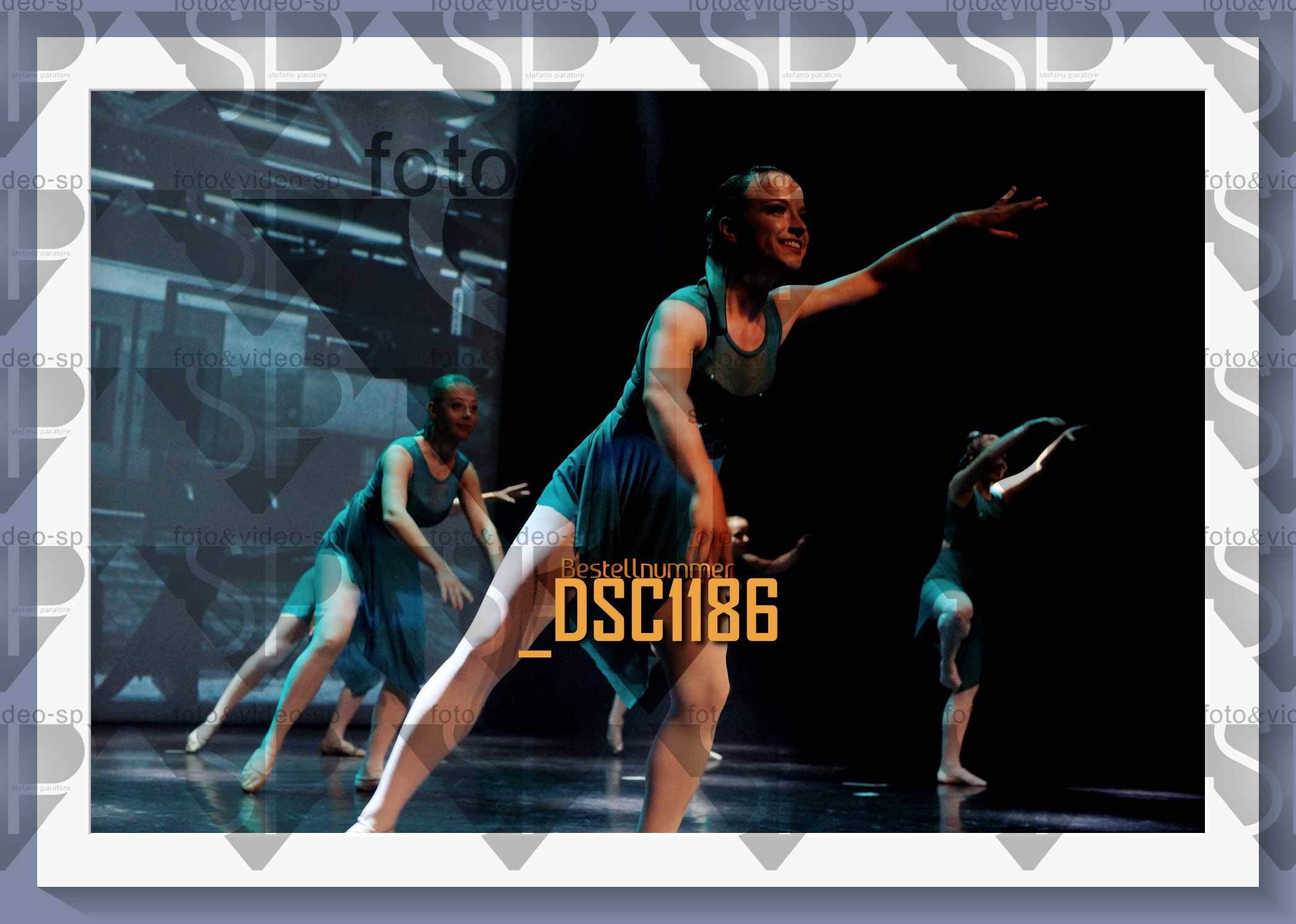 DSC1186