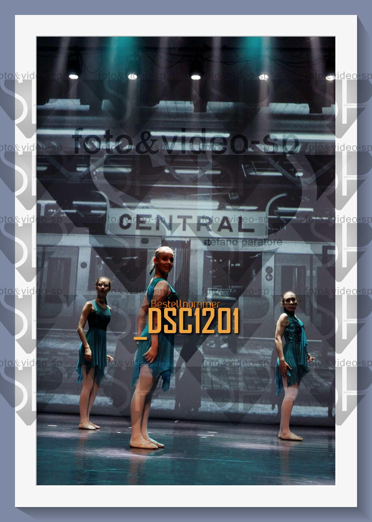 DSC1201