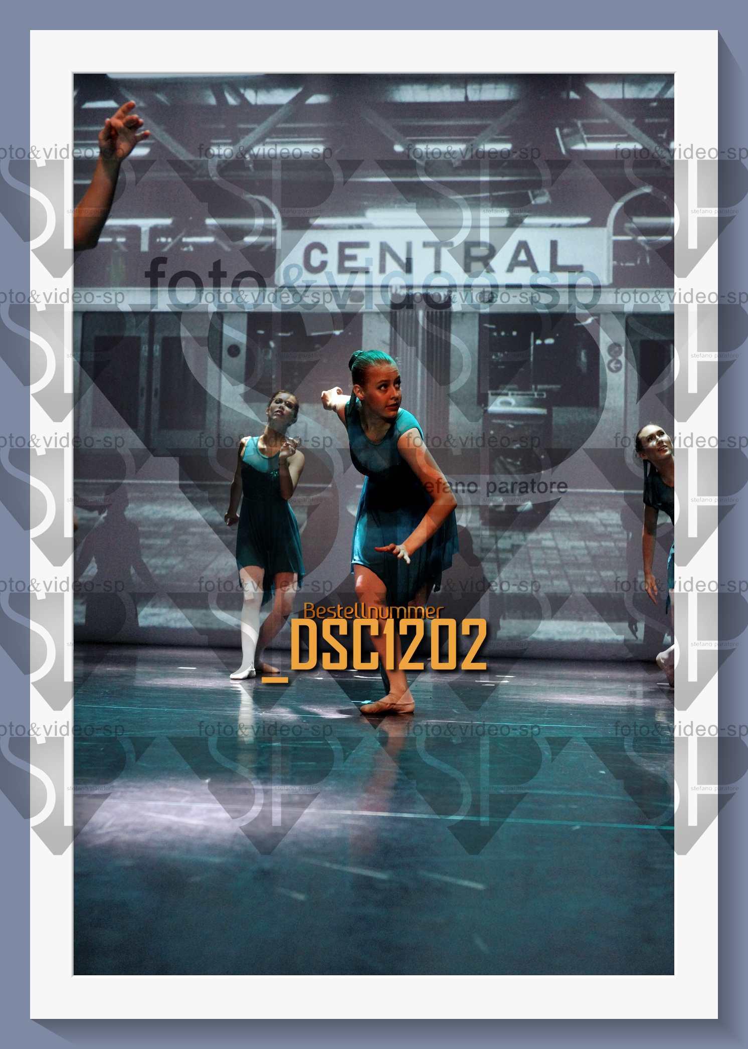 DSC1202