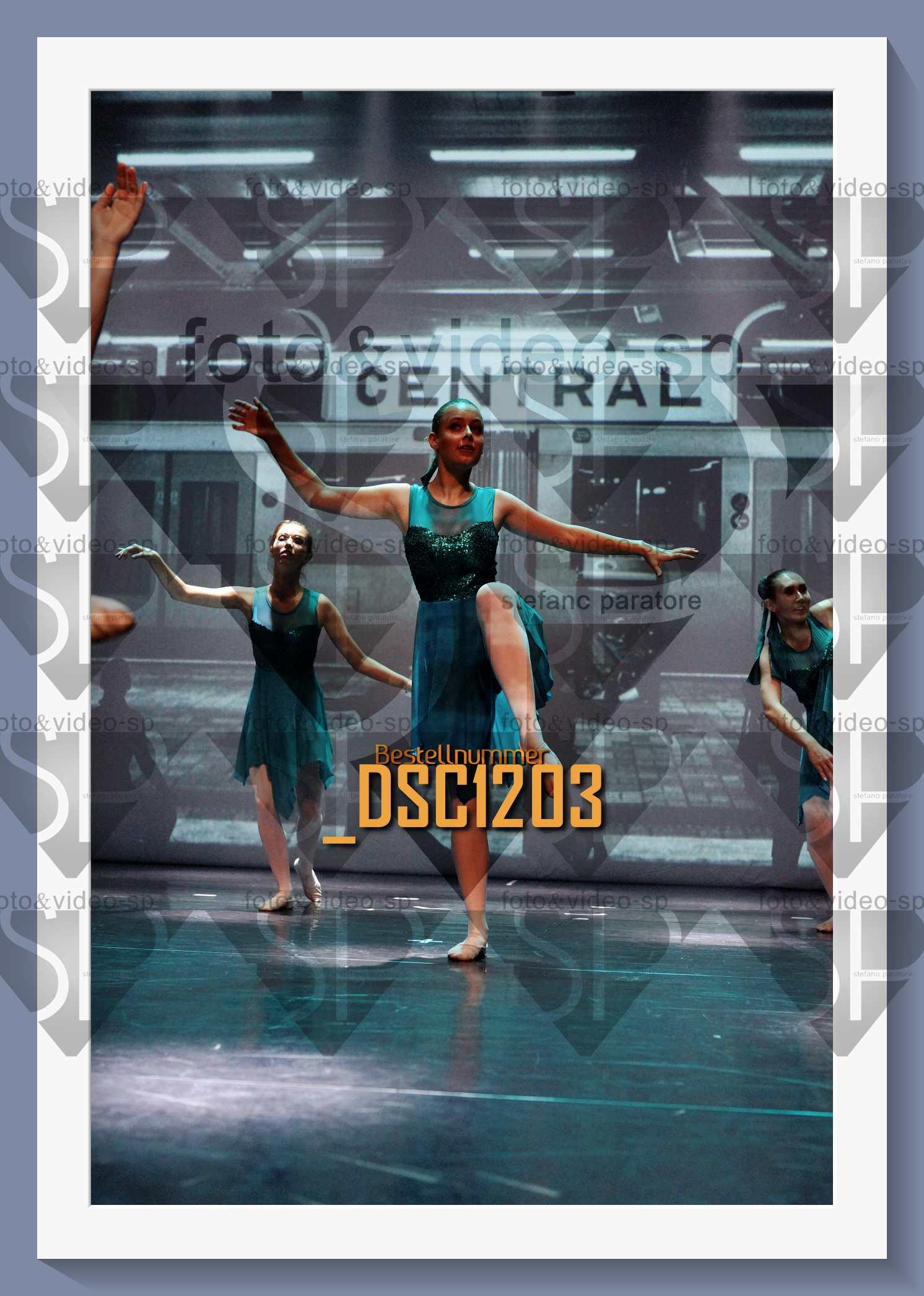 DSC1203