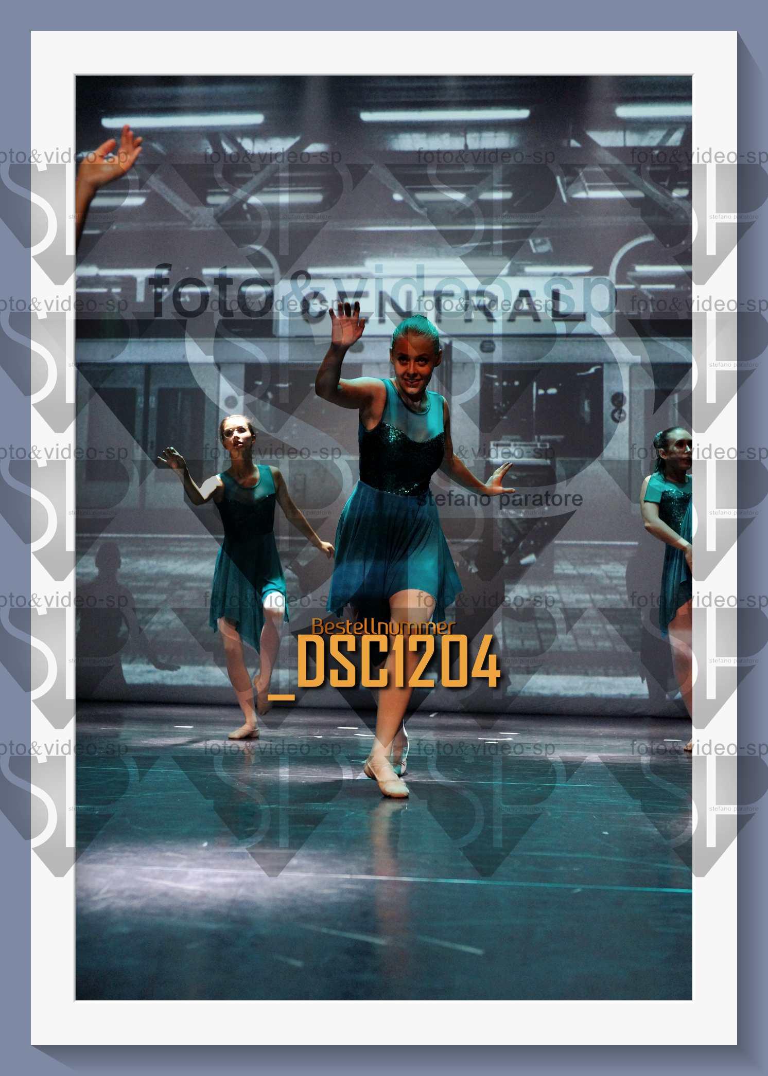 DSC1204