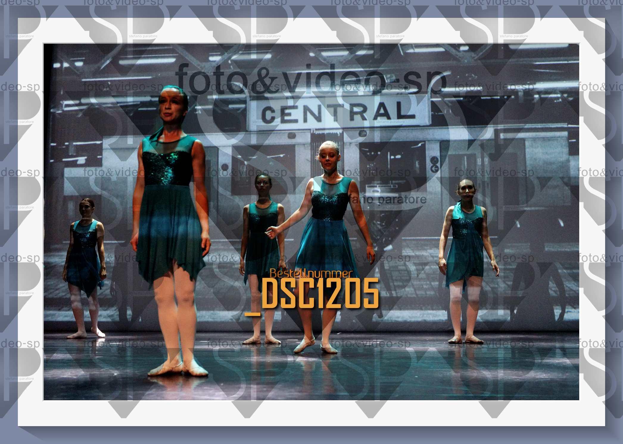 DSC1205