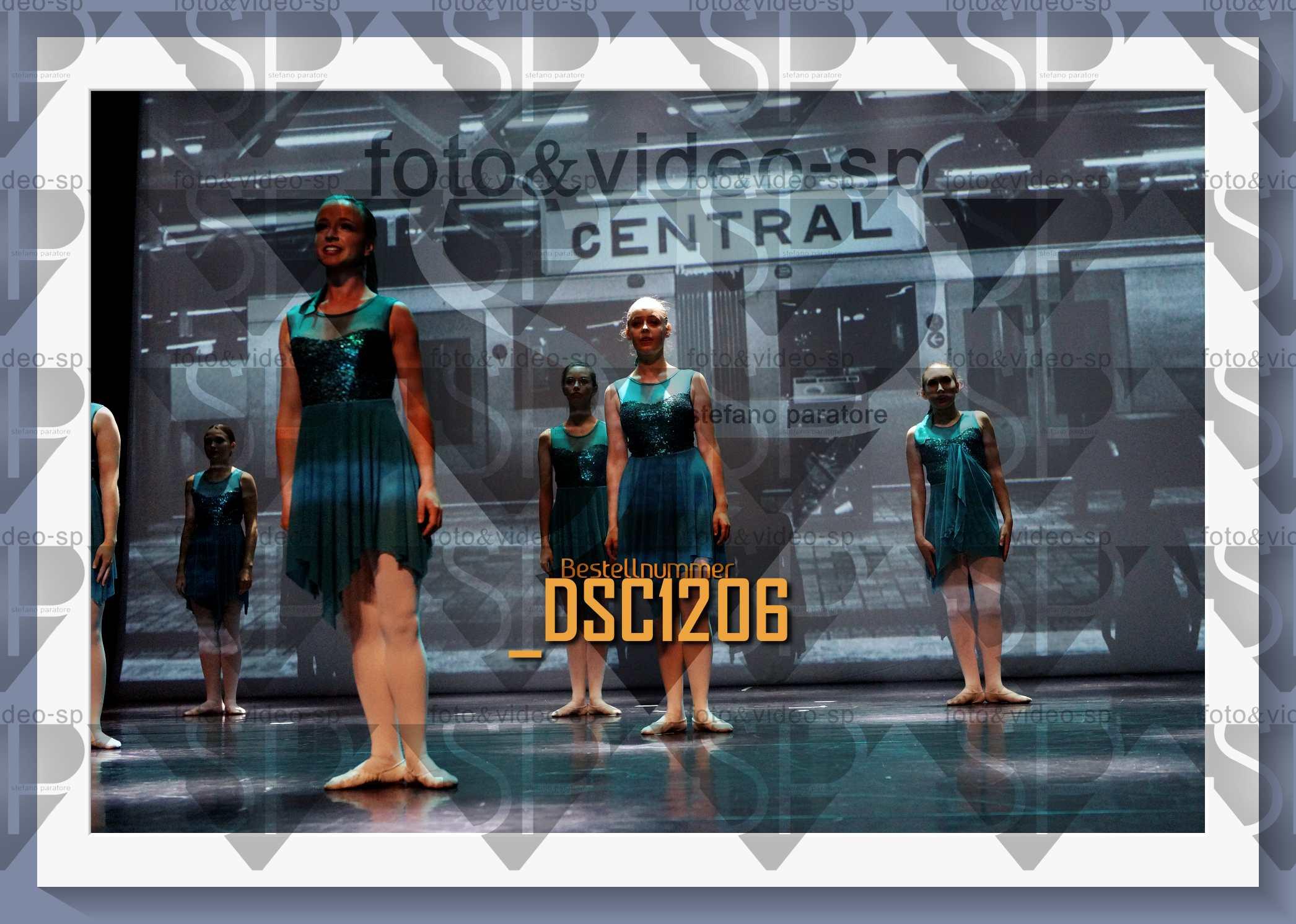 DSC1206