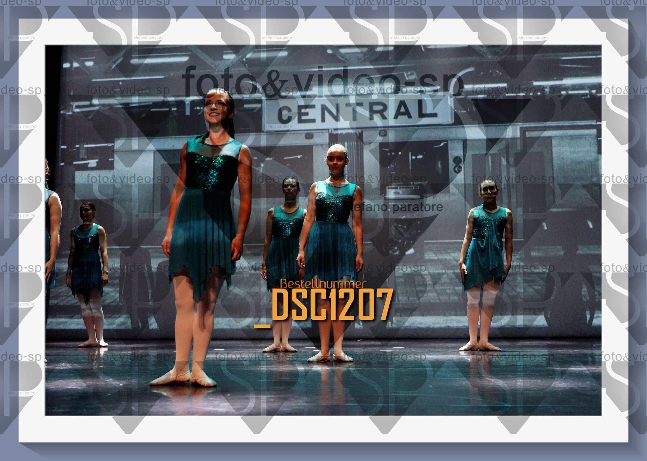 DSC1207