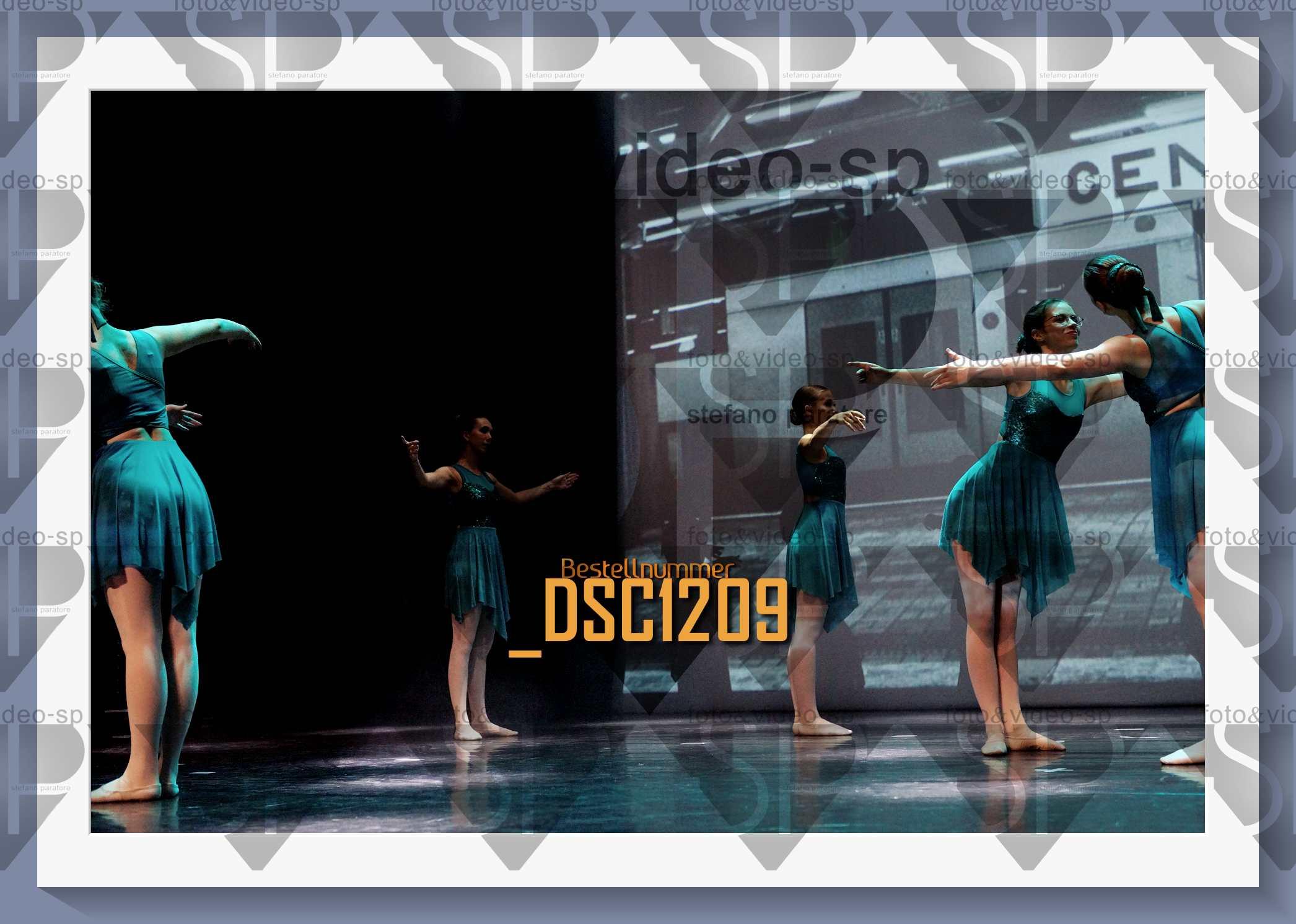 DSC1209