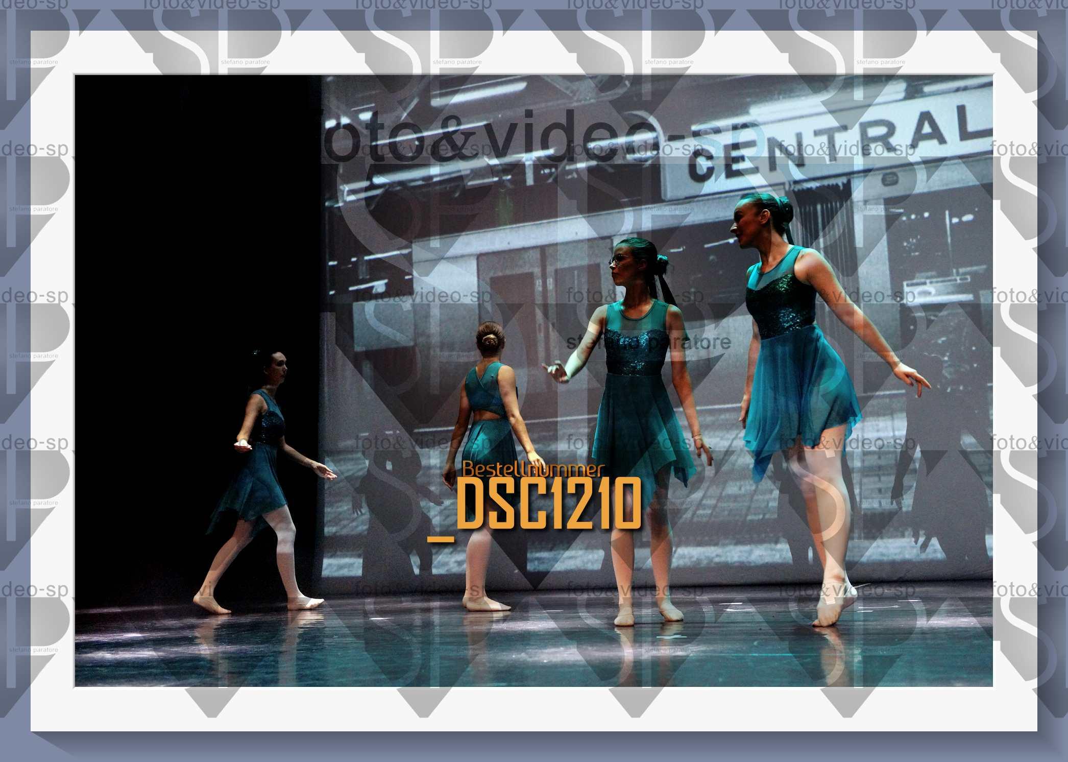 DSC1210