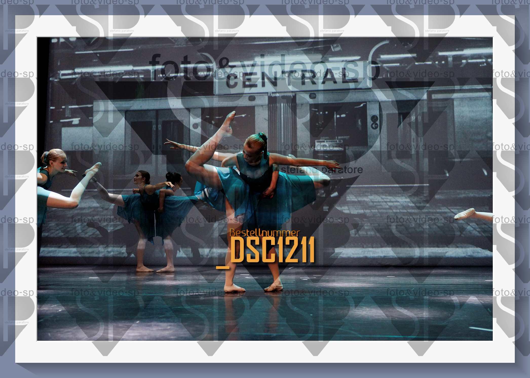 DSC1211