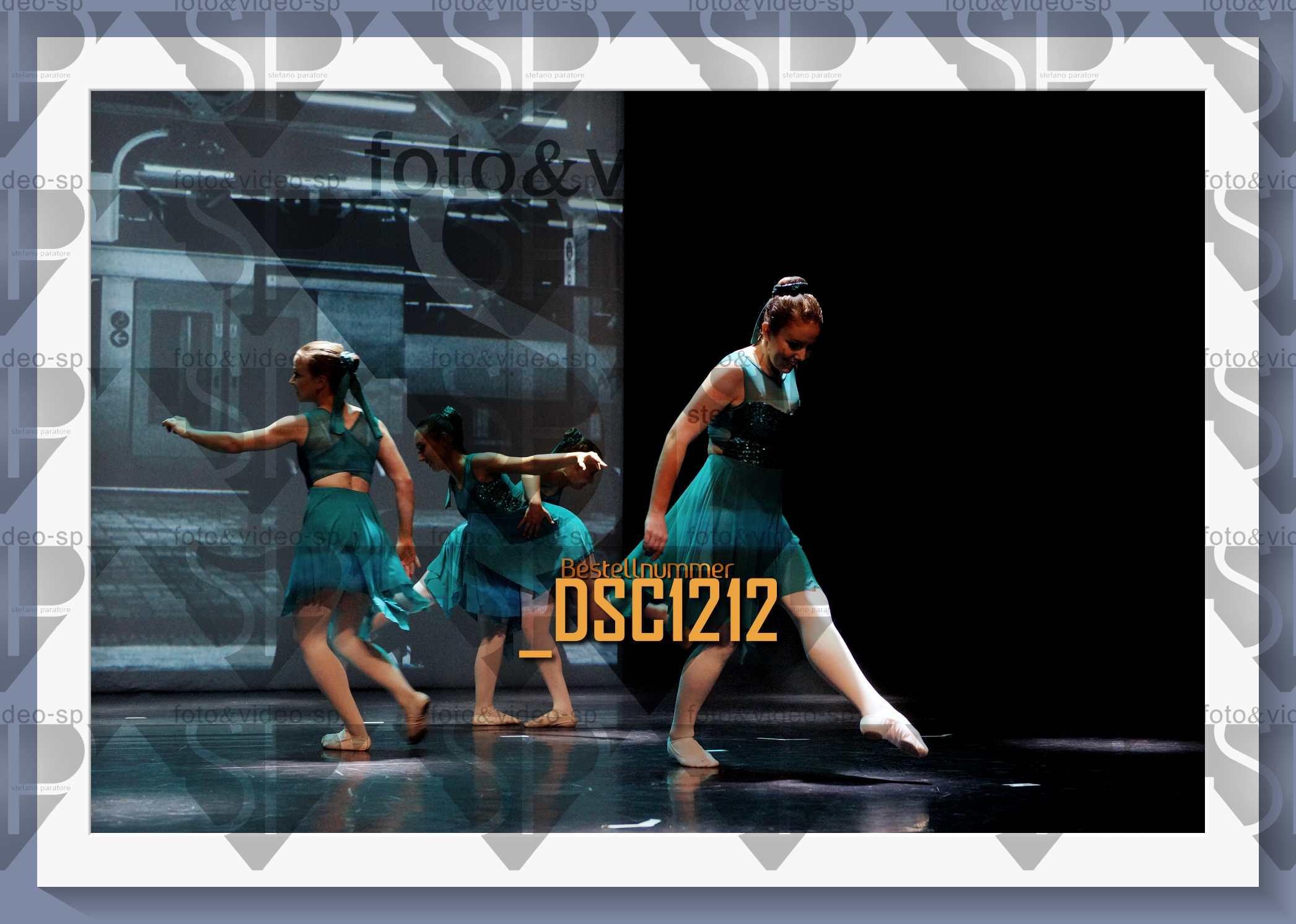 DSC1212