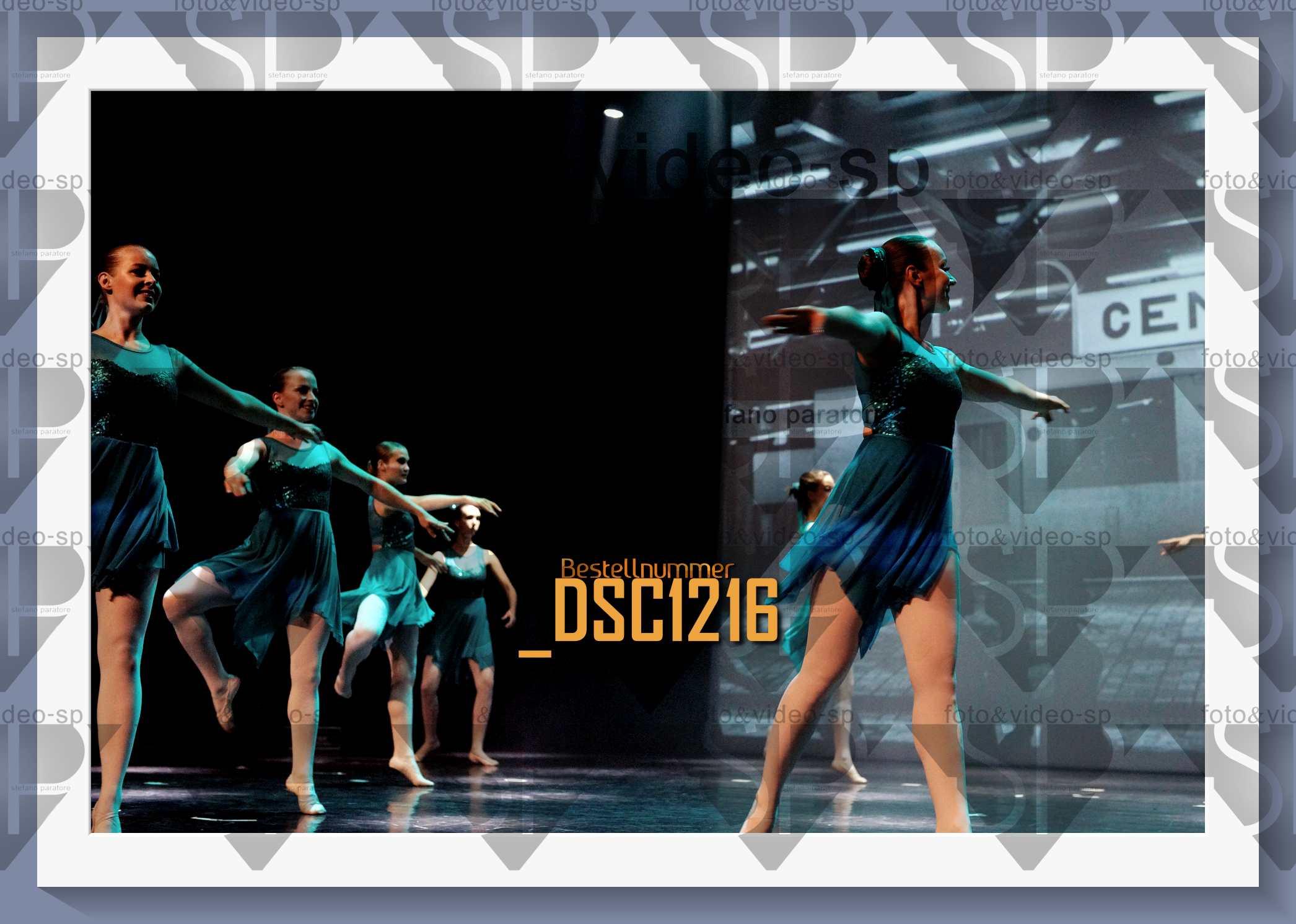 DSC1216