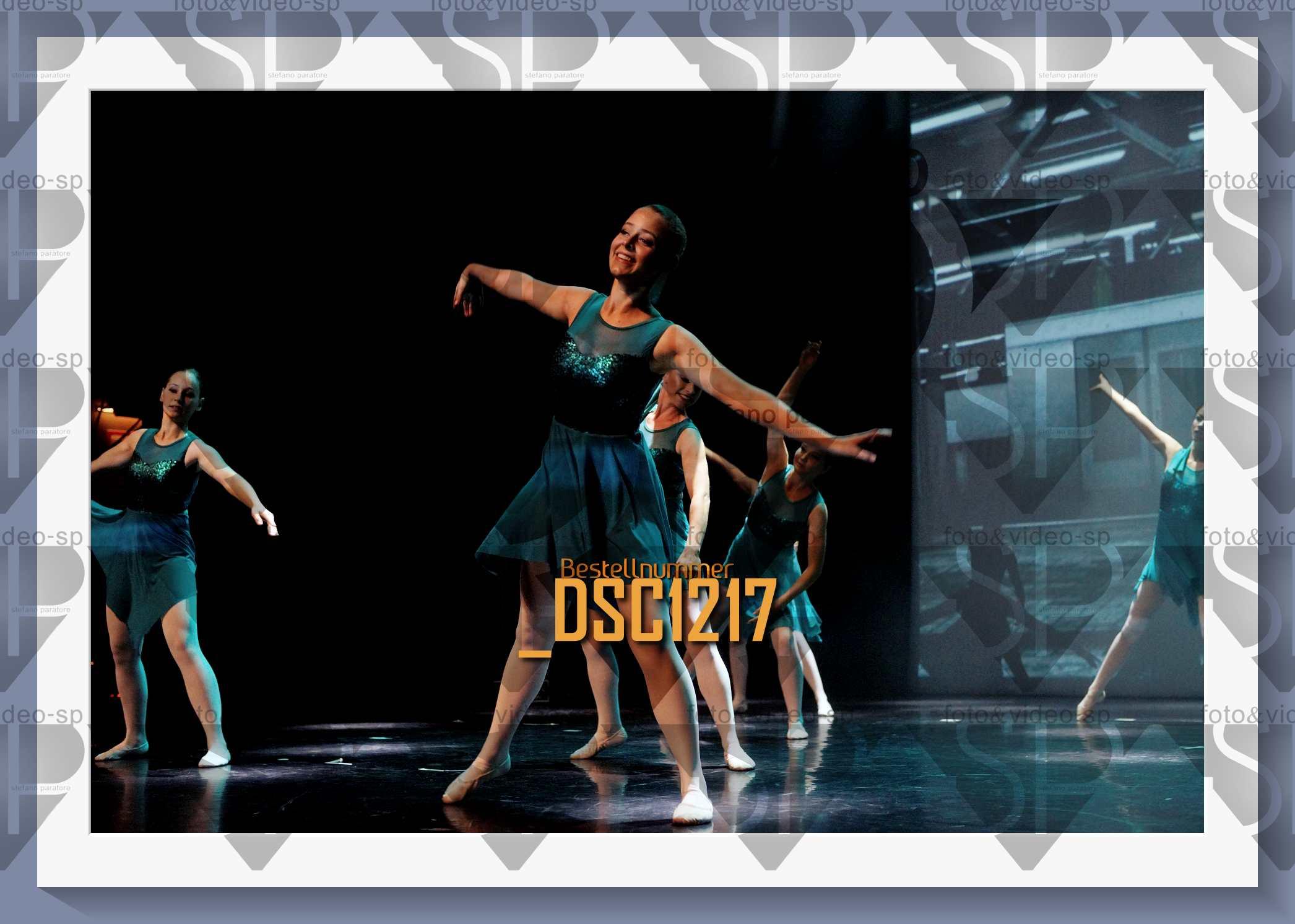 DSC1217