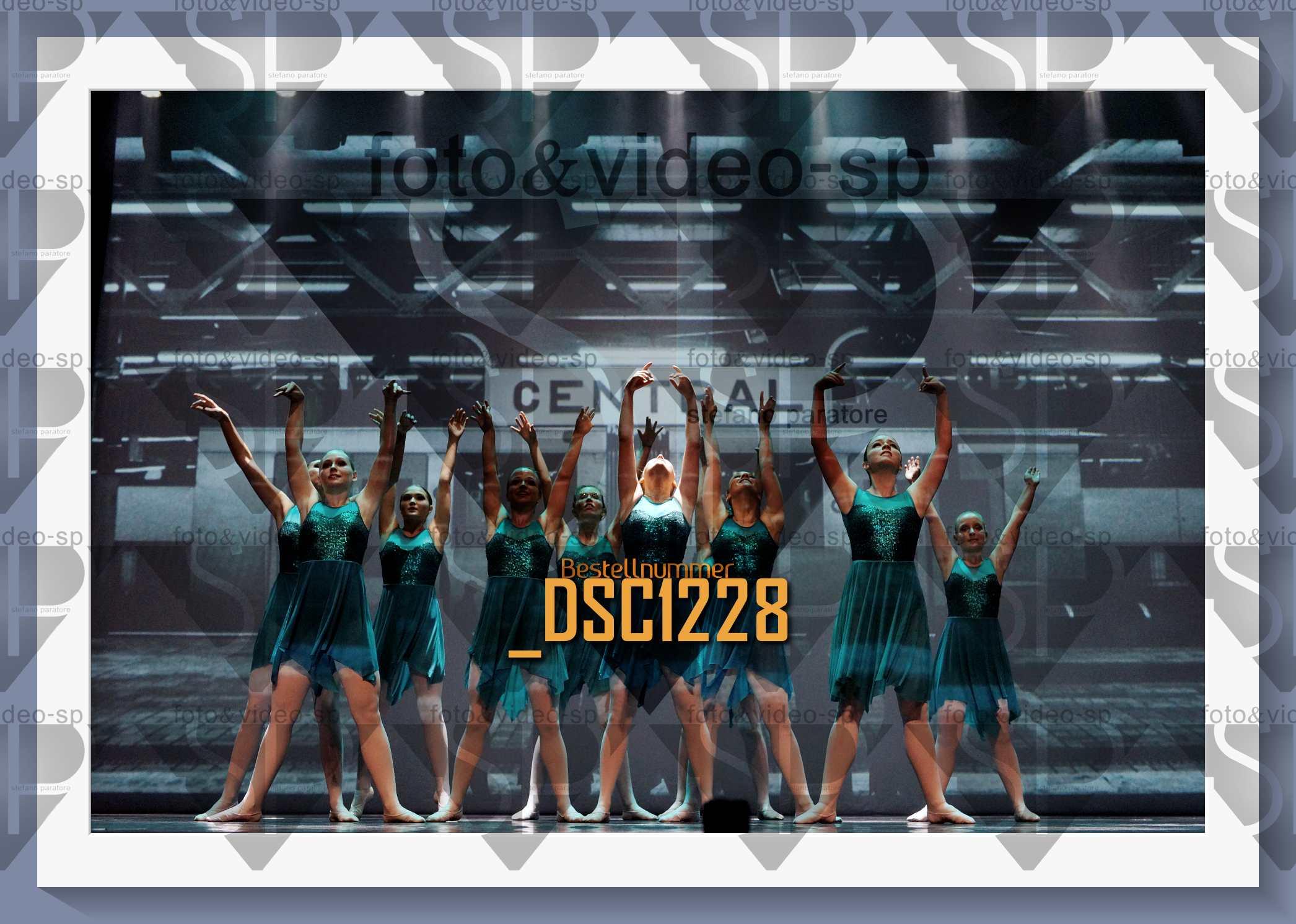 DSC1228