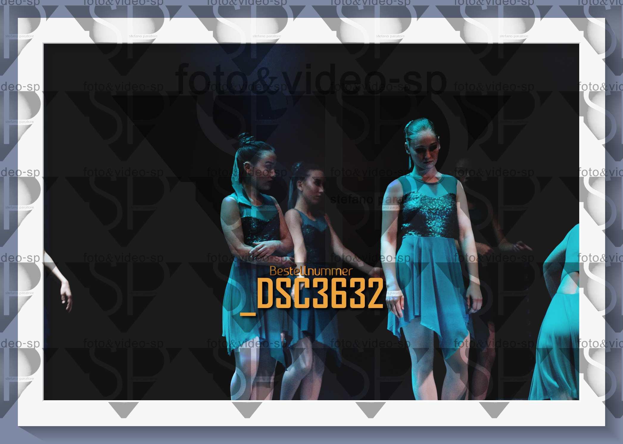 DSC3632