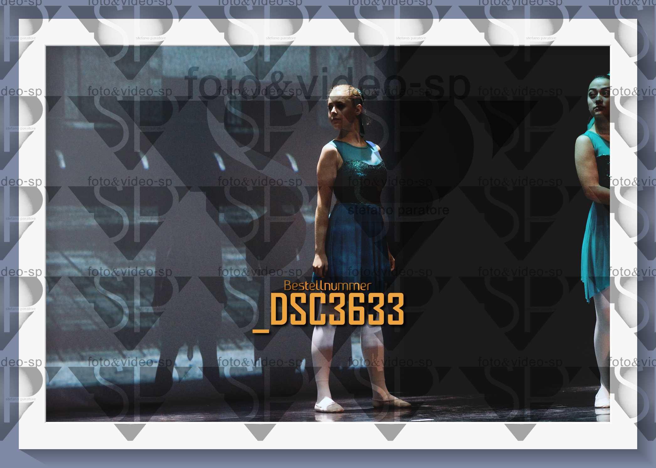DSC3633
