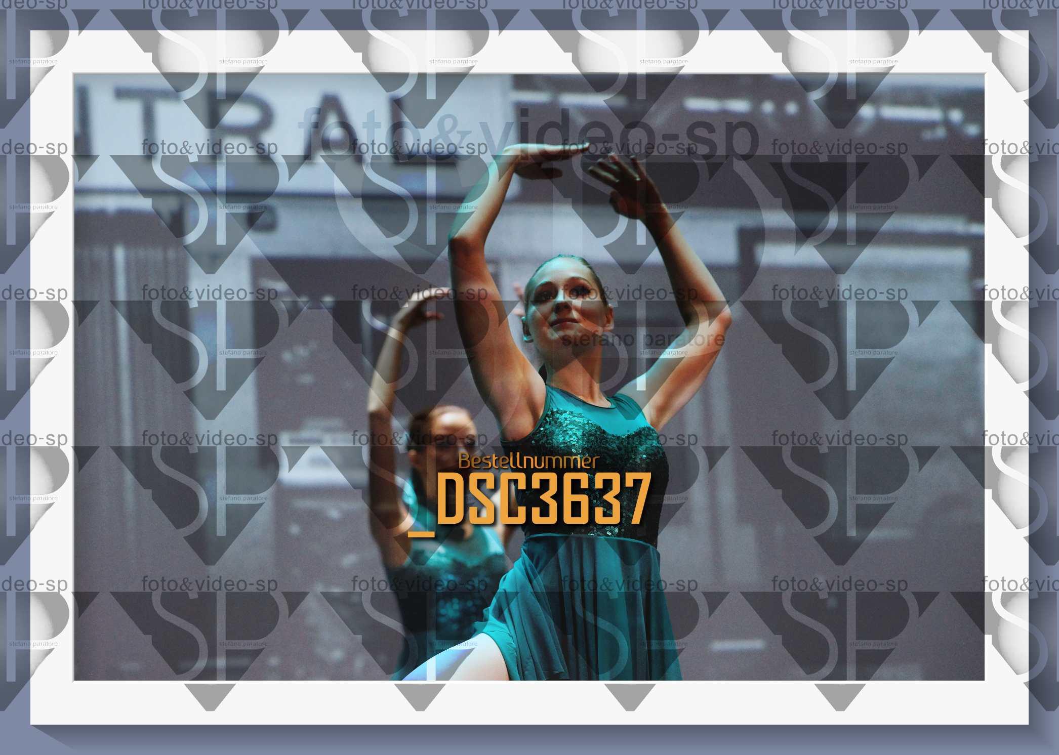 DSC3637