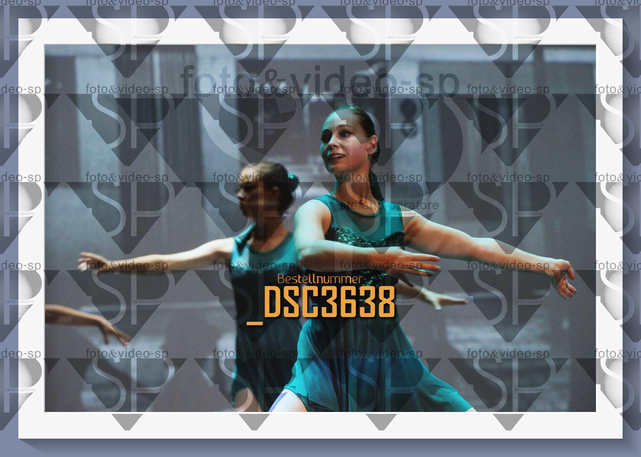 DSC3638